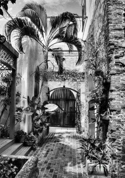 Photograph - Gates Of St Thomas 1 Bw by Mel Steinhauer