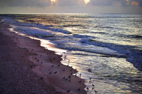 Digital Art - Gathering At The Beach by Michael Thomas