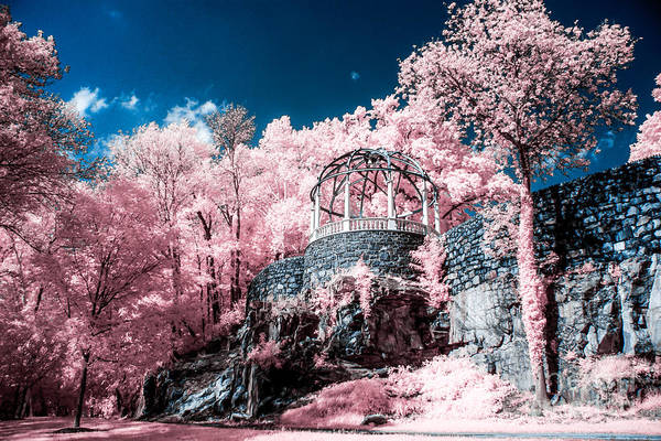Wall Art - Photograph - Gazebo At The Zoo by Stacey Granger