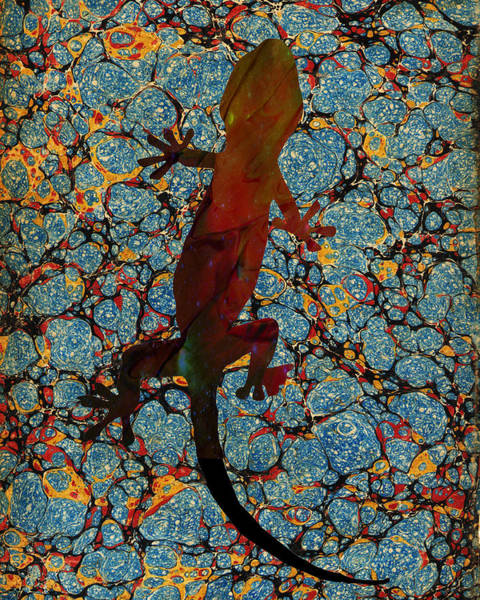 Painting - Gecko by Celestial Images