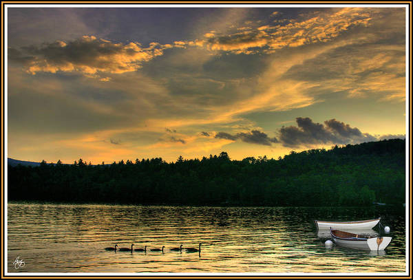 Photograph - Geese With Boats by Wayne King