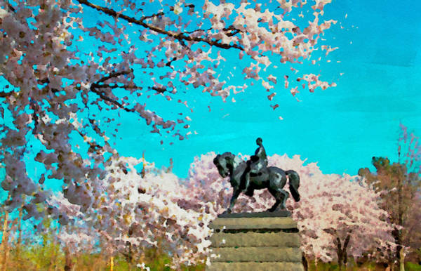 Photograph - General In The Blossoms by Alice Gipson