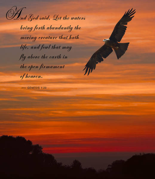 Wall Art - Photograph - Genesis 1-20 Scripture by Daniel Hagerman