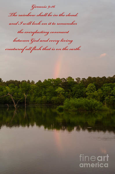 Lake Juliette Photograph - Genesis 9  16 by Donna Brown