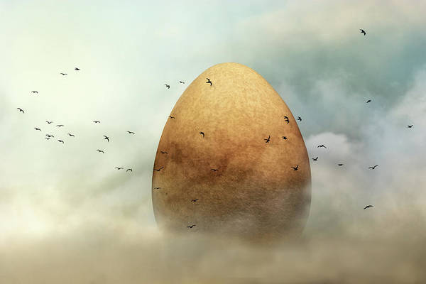 Birds Eggs Photograph - Genesis by Piet Flour