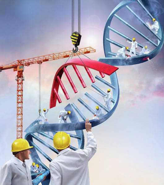 Genetic Engineering Art Print by Smetek/science Photo Library