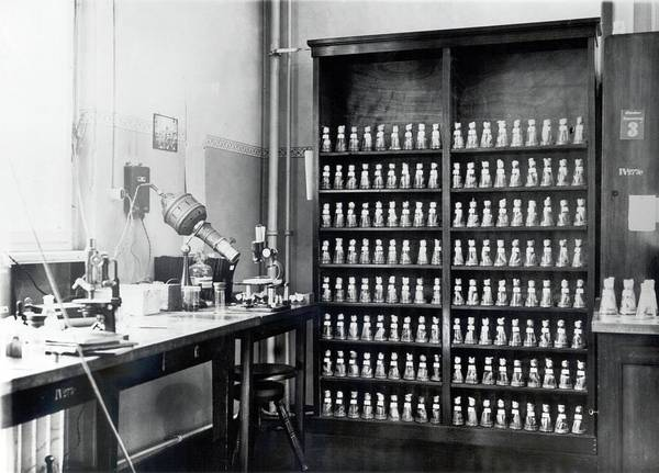 Rack Photograph - Genetics Research Fly Room by American Philosophical Society