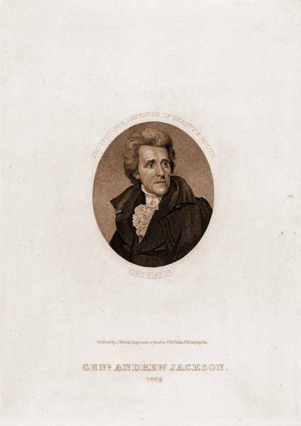 Booty Drawing - Genl. Andrew Jackson, 1828. Protector & Defender Of Beauty by Litz Collection