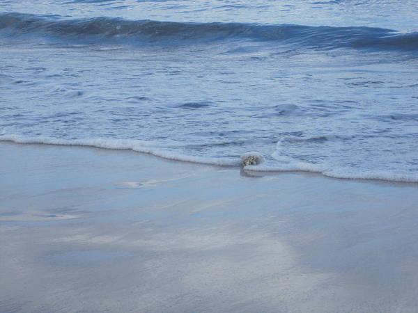 Photograph - Gentle Ocean Waves by Marilyn Wilson