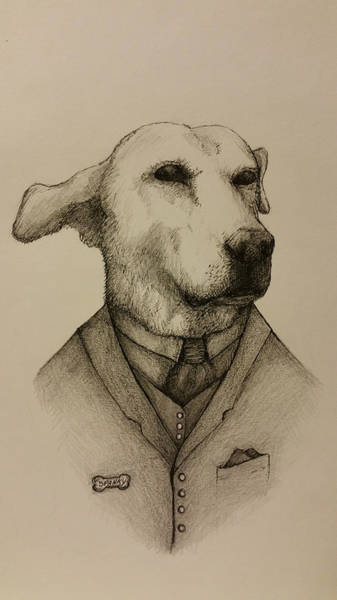 Mutt Drawing - Gentleman Spanky by Bob Gruber