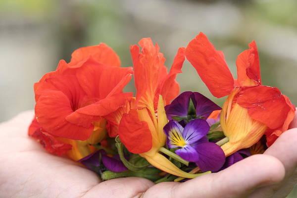 Gently Held Flowers Art Print by Carolyn Reinhart