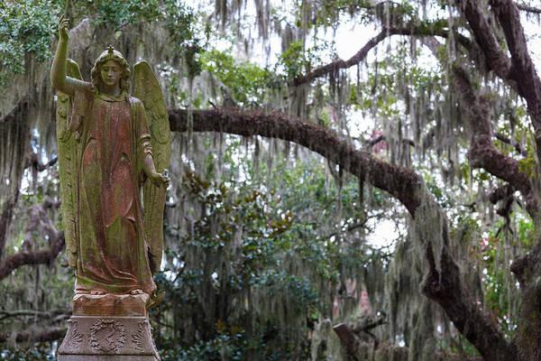 Walter Photograph - Georgia, Savannah, Bonaventure Cemetery by Walter Bibikow