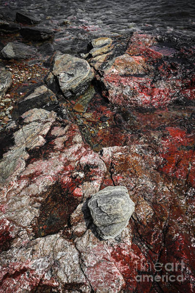 Photograph - Georgian Bay Rocks Abstract II by Elena Elisseeva