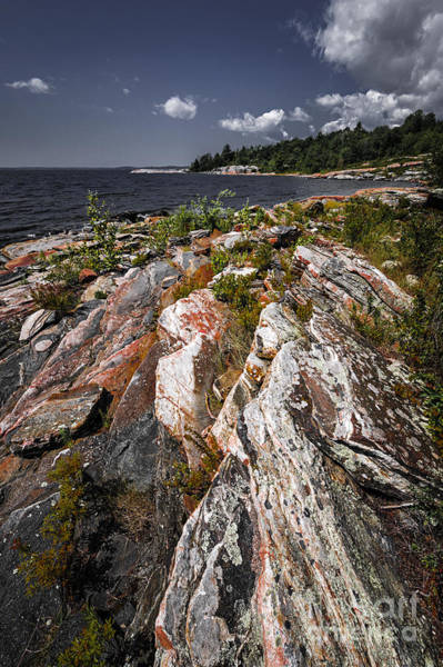 Photograph - Georgian Bay Rocks by Elena Elisseeva
