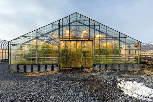 Geothermal Photograph - Geothermally Heated Greenhouse by Dr Juerg Alean