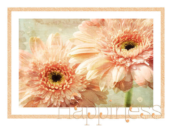 Wall Art - Photograph - Gerber Daisy Happiness 2 by Andee Design