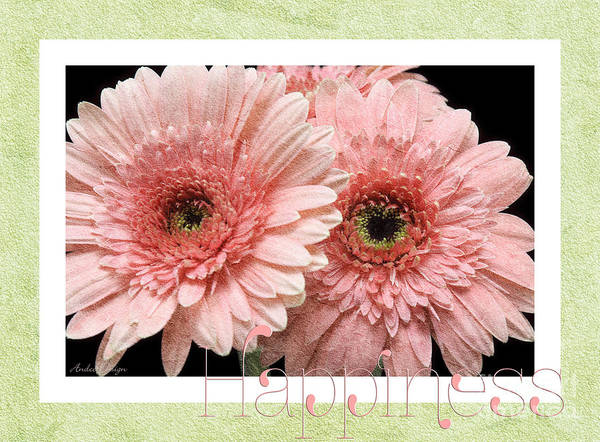 Wall Art - Photograph - Gerber Daisy Happiness 4 by Andee Design