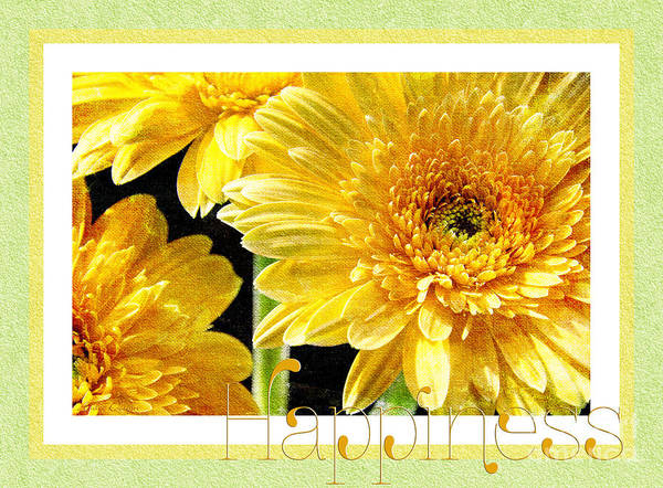 Photograph - Gerber Daisy Happiness 6 by Andee Design