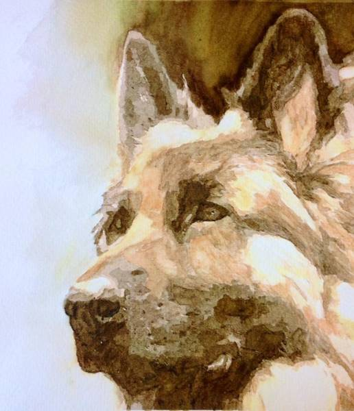Service Dog Painting - German Shepherd Maverick  by Lovereen Moore