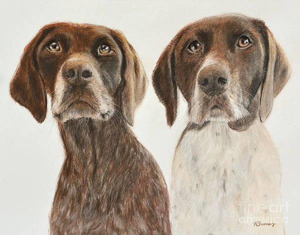Painting - German Shorthaired Pointers by Kate Sumners