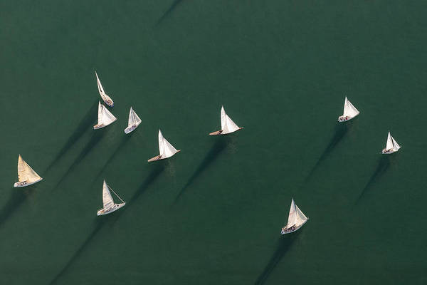 Germany, Baden-wuerttemberg, Lake Constance, Friedrichshafen, Aerial View Of Sailing Boats Art Print by Westend61