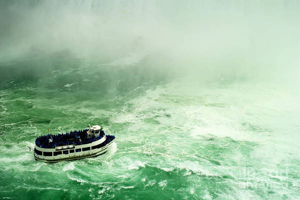 Photograph - Getting Wet by Brenda Kean