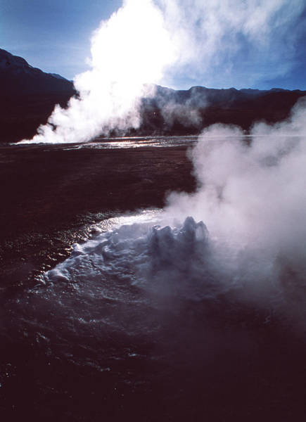 Geothermal Photograph - Geyser Field by David Nunuk/science Photo Library