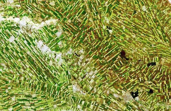 Wall Art - Photograph - Gezira Irrigation Scheme by Nasa/gsfc/meti/ersdac/jaros/aster Science Team/science Photo Library