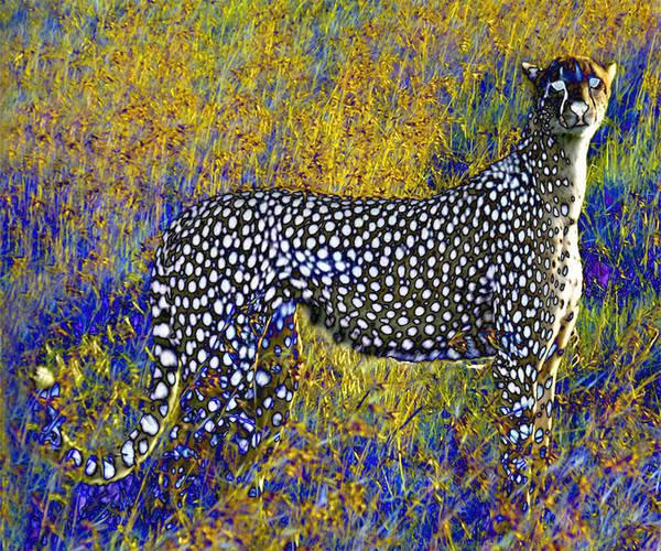 Digital Art - Ghost Cheetah by Philip Brent