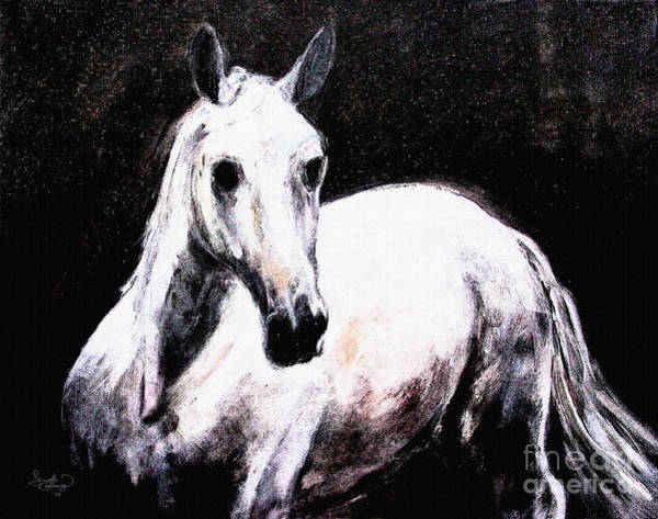 Andalusian Stallion Wall Art - Painting - Ghost Horse Modern Painting by Ginette Callaway