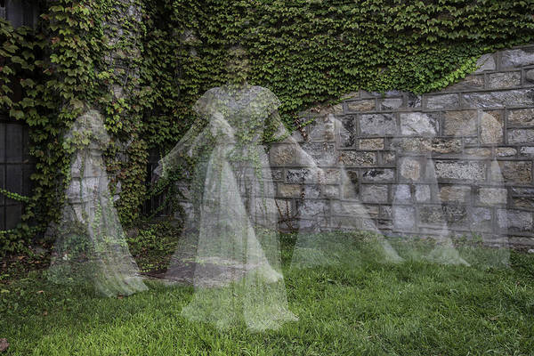 Photograph - Ghost In The Garden by Sara Hudock
