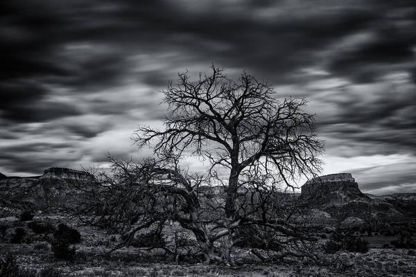 Chama Photograph - Ghost Ranch Abiquiu New Mexico Georgia On My Mind by Silvio Ligutti