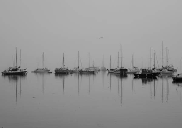 Photograph - Still Water - Bw by Marilyn Wilson