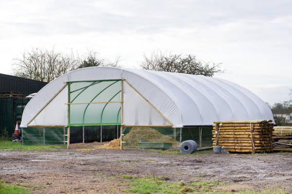 Farmyard Photograph - Giant Cloche by Tom Gowanlock