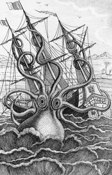 Giant Drawing - Giant Octopus Illustration From L Histoire Naturelle Generale Et Particuliere Des Mollusques by French School