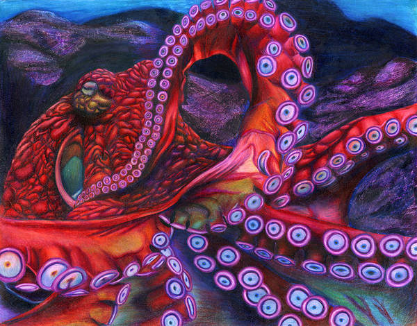 Ocean Drawing - Giant Pacific Octopus By Erick Villegas by California Coastal Commission
