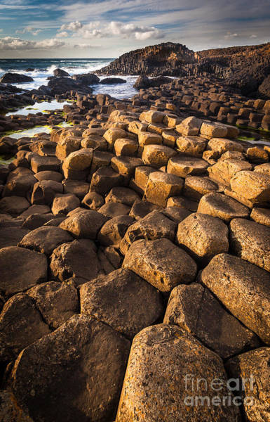 Photograph - Giant's Causeway Bricks by Inge Johnsson