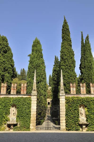 Photograph - Giardino Giusti Gardens In Verona Italy by Matthias Hauser