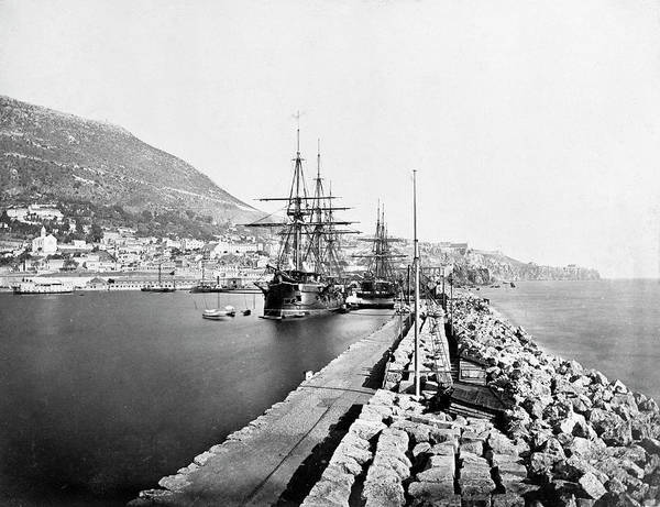 Wall Art - Photograph - Gibraltar Habour by Natural History Museum, London/science Photo Library