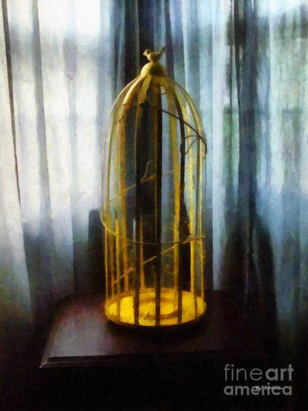 Painting - Gilded Cage by RC DeWinter