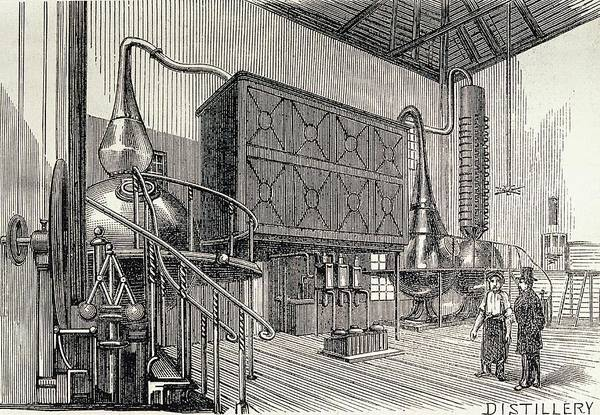 Distillery Photograph - Gin Distillery by George Bernard/science Photo Library