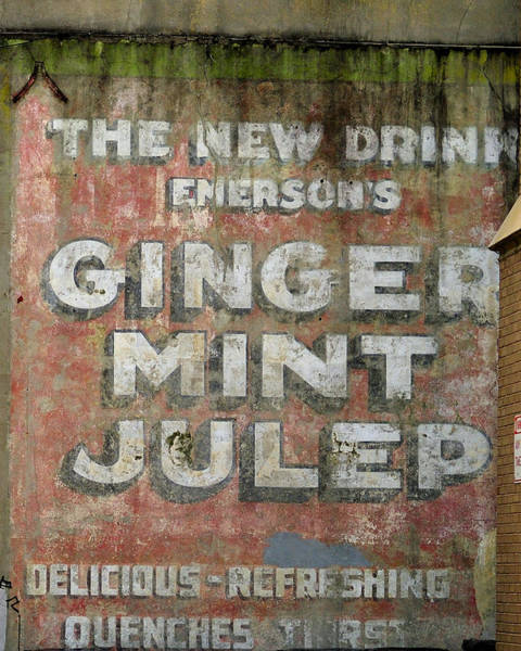 Photograph - Ginger Mint Julep by Bradford Martin