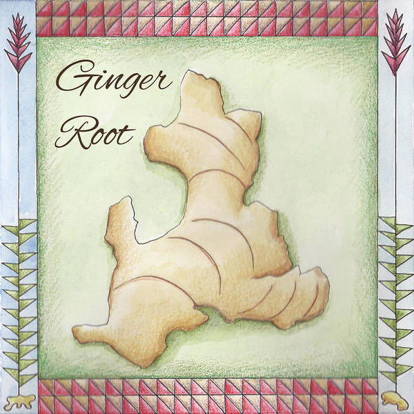 Wall Art - Painting - Ginger Root by Christy Beckwith