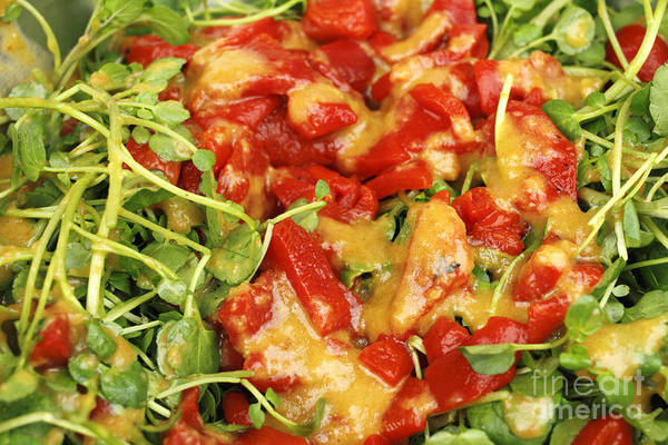 Salad Dressing Photograph - Ginger Watercress And Red Pepper Salad by Lee Serenethos