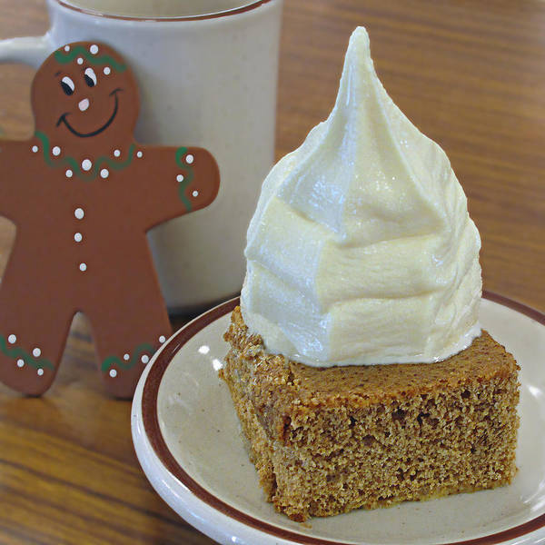 Photograph - Gingerbread And Ice Cream by Suzy Piatt