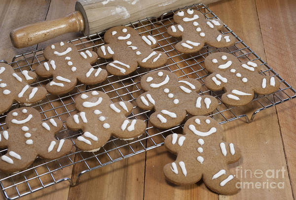 Icing Sugar Wall Art - Photograph - Gingerbread Man Cookies by Juli Scalzi