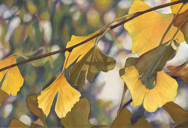 Wall Art - Painting - Ginkgo Gold by Sandy Haight
