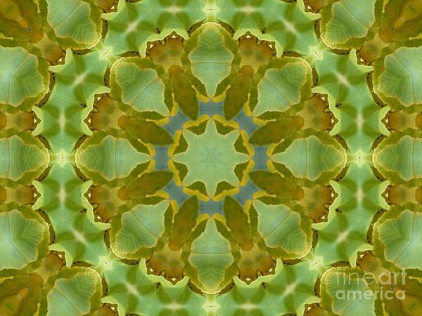 Photograph - Ginkgo Leaf Kaleidoscope Mandala by MM Anderson