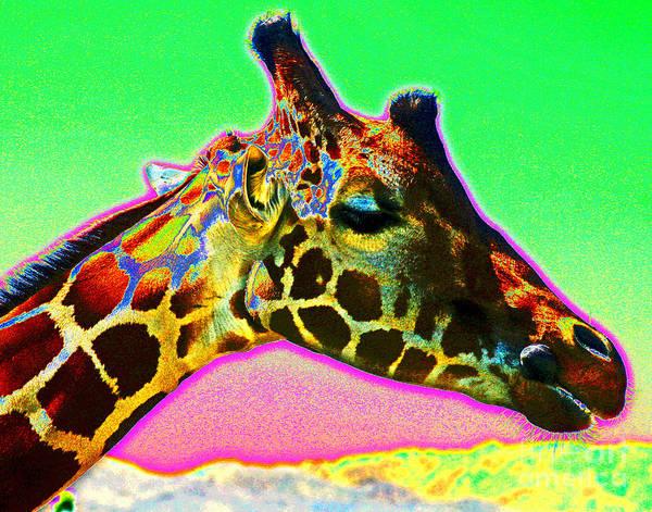 Photograph - Giraffe Colors by Larry Oskin