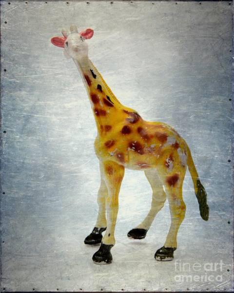 Wall Art - Photograph - Giraffe Figurine by Bernard Jaubert